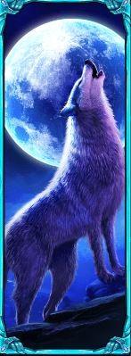 wolf free spins